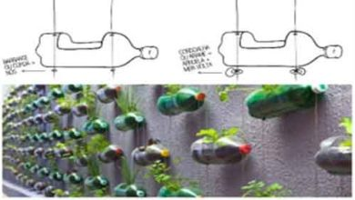 Foto de Oficina de Horta Vertical