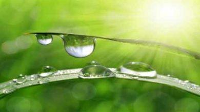 Foto de Força de Adesão da água