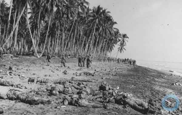 Campanha de Guadalcanal (campanha de Guadalcanal)