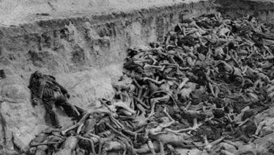 Photo of O Holocausto – O que foi, Conceito e Definição