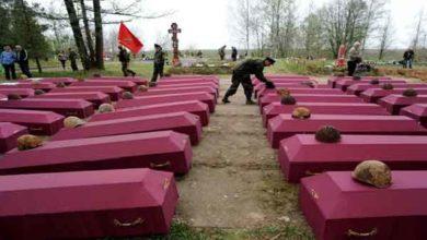 Photo of Vítimas e Mortos da Segunda Guerra Mundial
