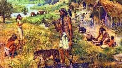 Photo of A revolução neolítica – características do Período Neolítico