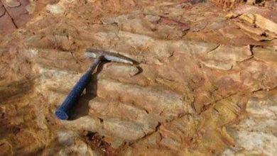 Photo of Ferramentas e conceitos comumente usados por geólogos.
