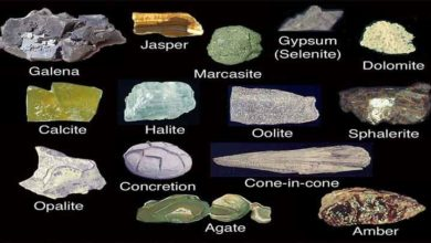 Photo of Identificação e classificação de Minerais e rochas